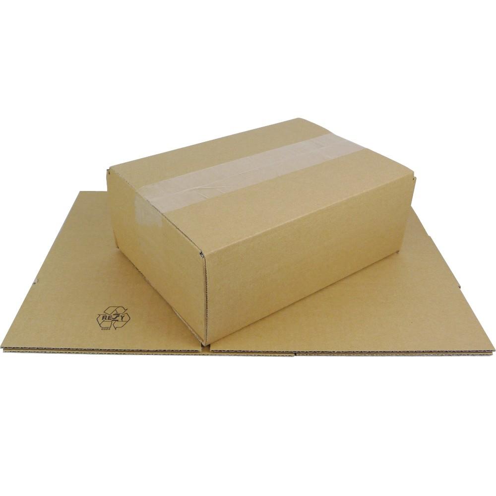 Faltkarton DPD XS 250x175x100 mm  Versandkarton Schachtel Kiste